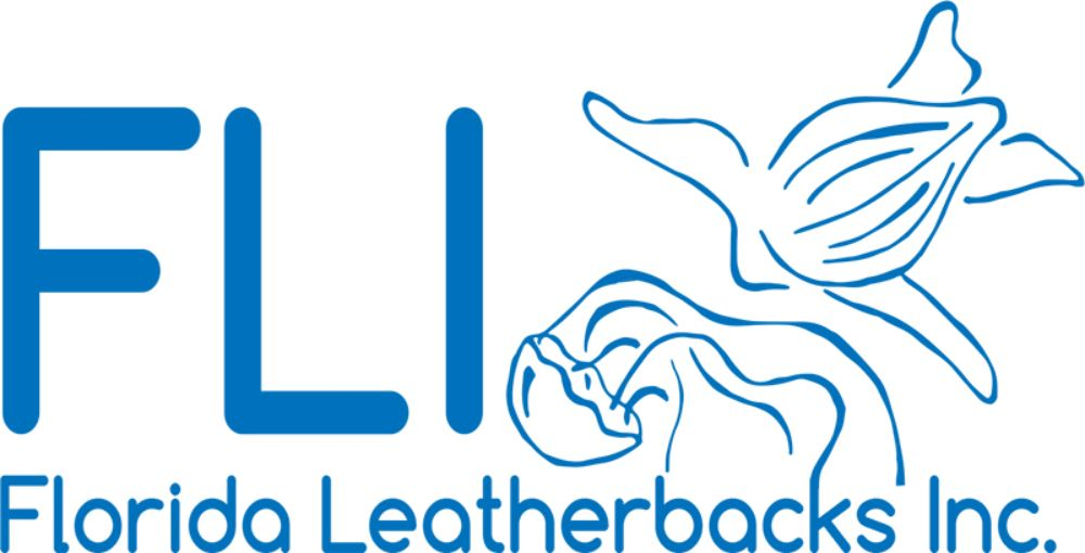 florida leatherbacks inc.